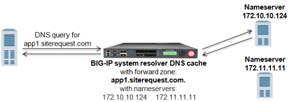Successful DNS query resolution from forward zone