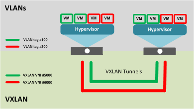 Multiple VXLAN tunnels