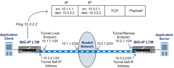 Illustration of a point-to-point IP tunnel