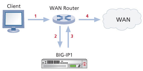 Network topology for a one-arm connection