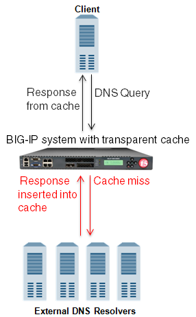 BIG-IP system using transparent cache