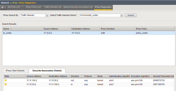 Example of IPsec SA Details tab diagnostics