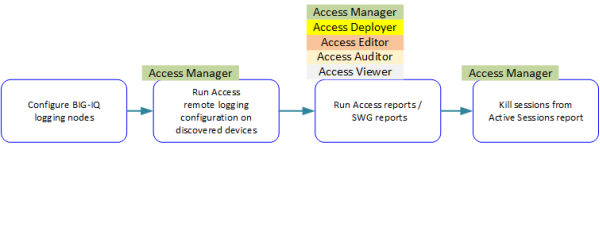 Only Access Manager user role      can kill sessions and run remote logging configuration; any Access user role can run reports