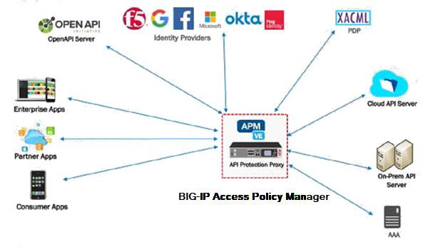 AskF5 | Manual Chapter: API Protection Concepts